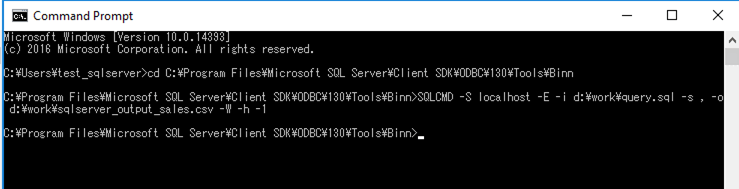 SQLServer_CSV出力
